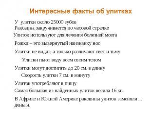 Интересные факты об улитках У улитки около 25000 зубов Раковина закручивается по