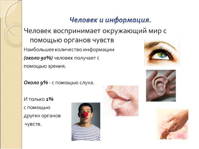 Человек и информация. Человек воспринимает окружающий мир с помощью органов чувств Наибольшее количество информации (около 90%) человек получает с помощью зрения. Около 9% - с помощью слуха. И только 1% с помощью других органов чувств.