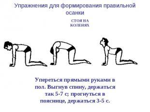 Упражнения для формирования правильной осанки СТОЯ НА КОЛЕНЯХ Упереться прямыми