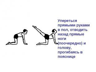 Упереться прямыми руками в пол, отводить назад прямые ноги (поочередно) и голову
