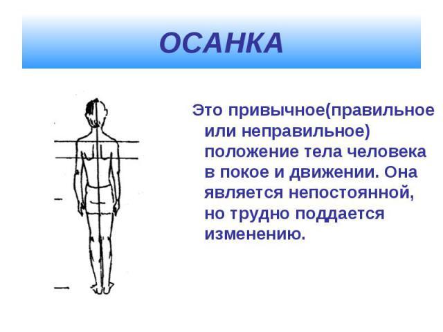 ОСАНКА Это привычное(правильное или неправильное) положение тела человека в покое и движении. Она является непостоянной, но трудно поддается изменению.