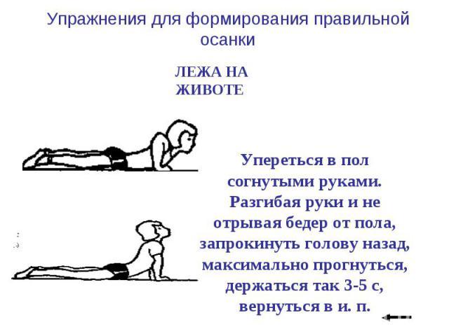 Упражнения для формирования правильной осанки ЛЕЖА НА ЖИВОТЕ Упереться в пол согнутыми руками. Разгибая руки и не отрывая бедер от пола, запрокинуть голову назад, максимально прогнуться, держаться так 3-5 с, вернуться в и. п.