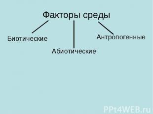 Факторы средыБиотические Абиотические Антропогенные