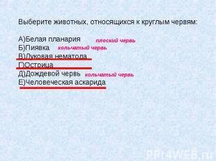 Выберите животных, относящихся к круглым червям: A)Белая планария Б)Пиявка B)Лук
