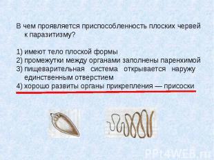 В чем проявляется приспособленность плоских червей к паразитизму? 1) имеют тело