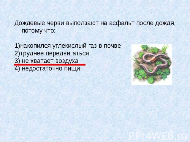 Дождевые черви выползают на асфальт после дождя, потому что: 1)накопился углекислый газ в почве 2)труднее передвигаться 3) не хватает воздуха 4) недостаточно пищи