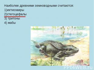 Наиболее древними земноводными считаются: 1)ихтиозавры 2)стегоцефалы 3) тритоны