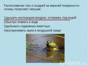 Расположение глаз и ноздрей на верхней поверхности головы позволяет лягушке: 1)д