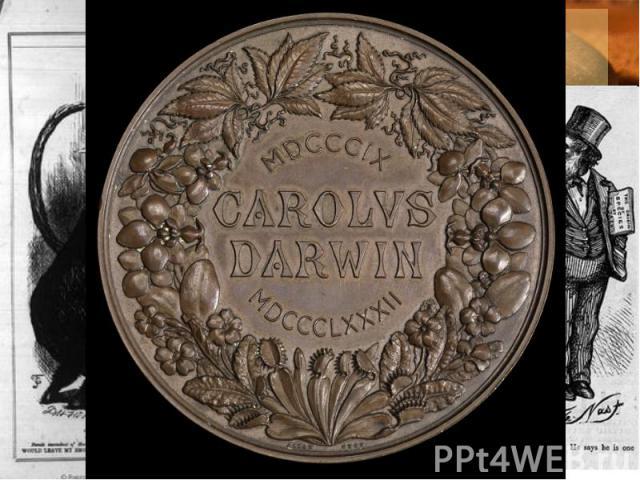 Дарвин в современном мире