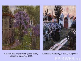 Сергей Вас. Герасимов (1885-1964) «Сирень в цвету», 1955 Кориак К. Костаниди, 19