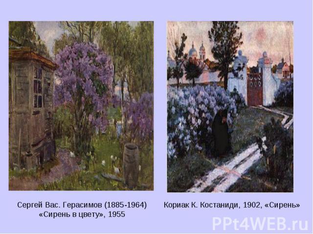 Сергей Вас. Герасимов (1885-1964) «Сирень в цвету», 1955 Кориак К. Костаниди, 1902, «Сирень»