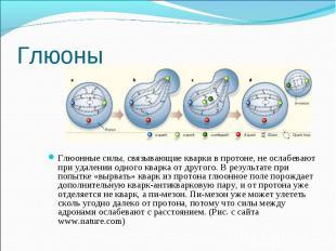 Глюоны Глюонные силы, связывающие кварки в протоне, не ослабевают при удалении о