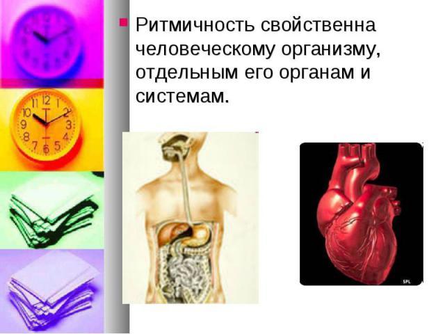 Ритмичность свойственна человеческому организму, отдельным его органам и системам.