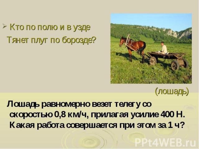 Кто по полю и в узде Тянет плуг по борозде? (лошадь) Лошадь равномерно везет телегу со скоростью 0,8 км/ч, прилагая усилие 400 Н. Какая работа совершается при этом за 1 ч?