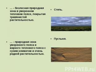 … - безлесная природная зона в умеренном тепловом поясе, покрытая травянистой ра