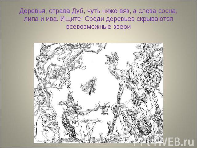 Деревья, справа Дуб, чуть ниже вяз, а слева сосна, липа и ива. Ищите! Среди деревьев скрываются всевозможные звери