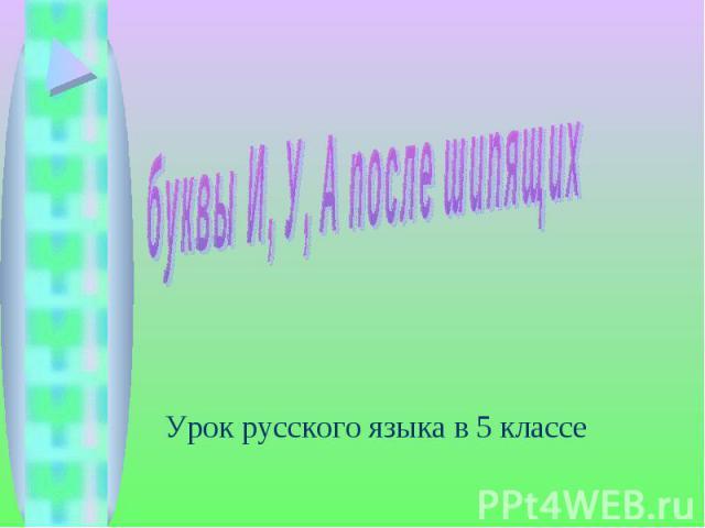 Буквы И, У, А после шипящих Урок русского языка в 5 классе