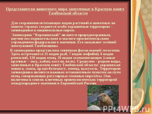 Представители животного мира занесенные в Красную книгу Тамбовской области Для сохранения исчезающих видов растений и животных во многих странах создаются особо охраняемые территории – заповедники и национальные парки. Заповедник