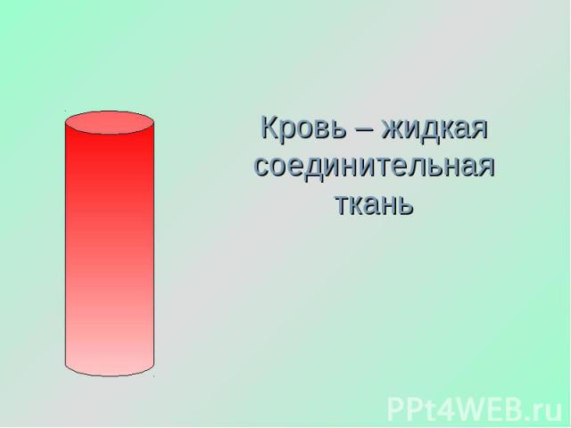Кровь – жидкая соединительная ткань
