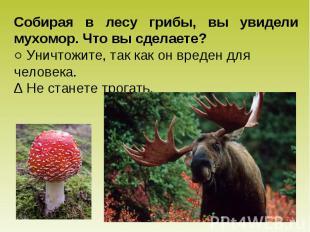 Собирая в лесу грибы, вы увидели мухомор. Что вы сделаете? ○ Уничтожите, так как