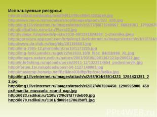 Используемые ресурсы: http://radikal.ua/data/upload/04012/0fccf/8e54583da0.jpg h