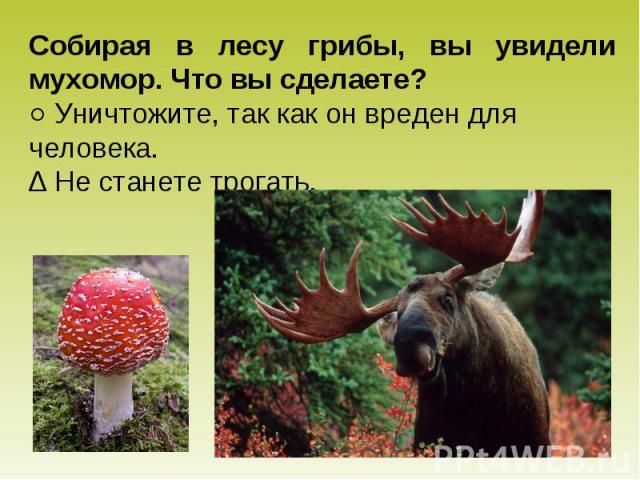 Собирая в лесу грибы, вы увидели мухомор. Что вы сделаете? ○ Уничтожите, так как он вреден для человека. ∆ Не станете трогать.