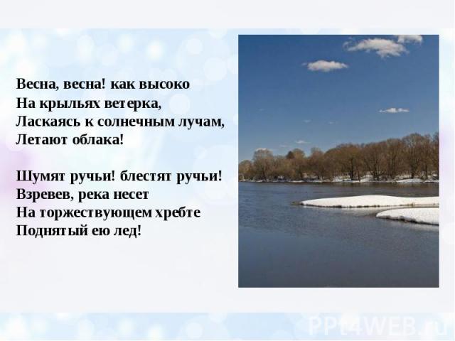 Весна, весна! как высоко На крыльях ветерка, Ласкаясь к солнечным лучам, Летают облака! Шумят ручьи! блестят ручьи! Взревев, река несет На торжествующем хребте Поднятый ею лед!