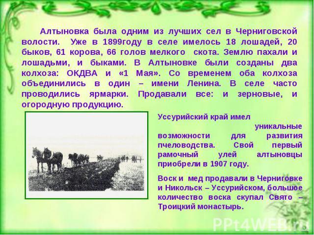 Алтыновка была одним из лучших сел в Черниговской волости. Уже в 1899году в селе имелось 18 лошадей, 20 быков, 61 корова, 66 голов мелкого скота. Землю пахали и лошадьми, и быками. В Алтыновке были созданы два колхоза: ОКДВА и «1 Мая». Со временем о…