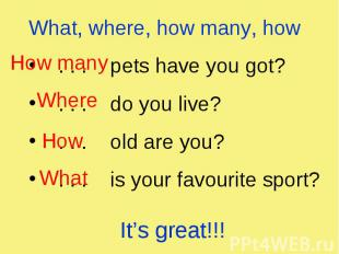 What, where, how many, how . . . pets have you got? . . . do you live? . . . old