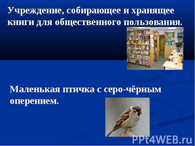Учреждение, собирающее и хранящее книги для общественного пользования. Маленькая птичка с серо-чёрным оперением.