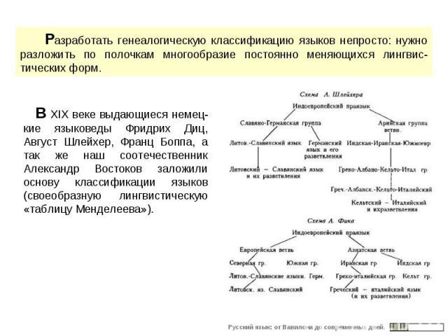 Разработать генеалогическую классификацию языков непросто: нужно разложить по полочкам многообразие постоянно меняющихся лингвис-тических форм. В XIX веке выдающиеся немец-кие языковеды Фридрих Диц, Август Шлейхер, Франц Боппа, а так же наш соотечес…