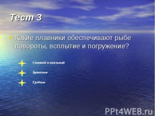 Тест 3 Какие плавники обеспечивают рыбе повороты, всплытие и погружение?