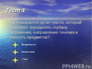Тест 4 Как называется орган чувств, который позволяет определять глубину погруже