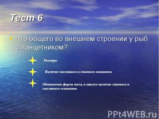 Тест 6 Что общего во внешнем строении у рыб с ланцетником?