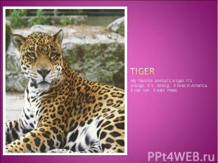 Tiger My favorite animal`s a tiger. It`s orange . It`s strong . It lives in Amer