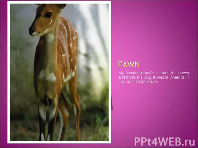 fawn My favorite animal`s a fawn. It`s brown and white. It`s long. It lives in America. It can run. It eats leaves.
