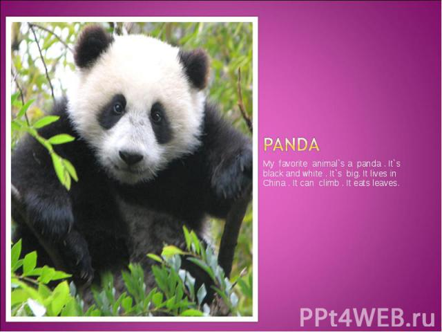 Panda My favorite animal`s a panda . It`s black and white . It`s big. It lives in China . It can climb . It eats leaves.