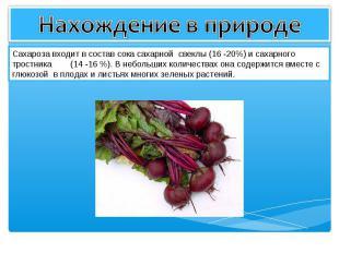 Нахождение в природе Сахароза входит в состав сока сахарной свеклы (16 -20%) и с