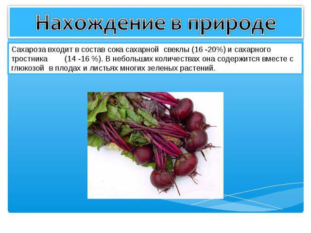 Нахождение в природе Сахароза входит в состав сока сахарной свеклы (16 -20%) и сахарного тростника (14 -16 %). В небольших количествах она содержится вместе с глюкозой в плодах и листьях многих зеленых растений.