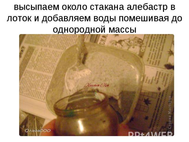 высыпаем около стакана алебастр в лоток и добавляем воды помешивая до однородной массы