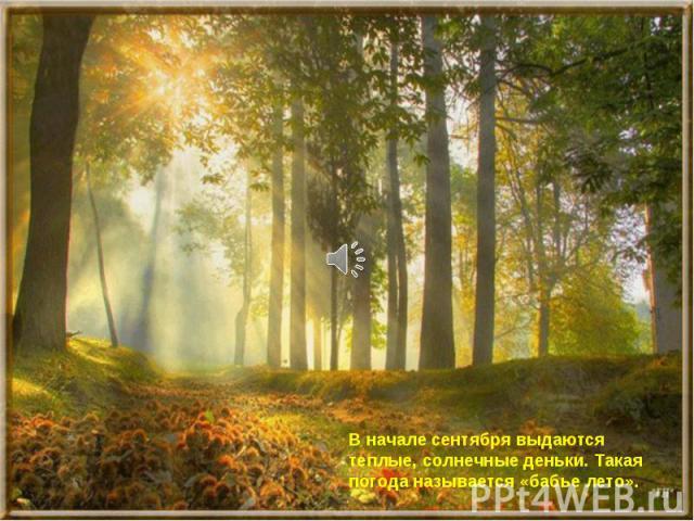 В начале сентября выдаются теплые, солнечные деньки. Такая погода называется «бабье лето».