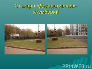 Станция «Декоративная»- клумбарий
