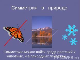 Симметрия в природе Симметрию можно найти среди растений и животных, и в природн