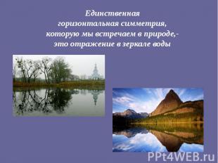 Единственная горизонтальная симметрия, которую мы встречаем в природе,- это отра