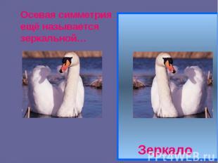 Осевая симметрия ещё называется зеркальной… Зеркало