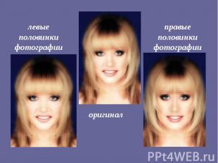левые половинки фотографии правые половинки фотографии оригинал