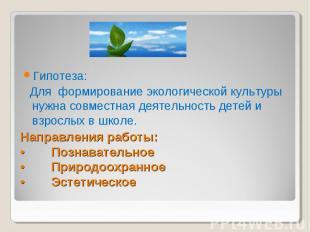 Гипотеза: Для формирование экологической культуры нужна совместная деятельность