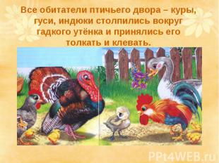 Все обитатели птичьего двора – куры, гуси, индюки столпились вокруг гадкого утён