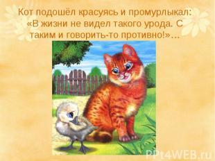 Кот подошёл красуясь и промурлыкал: «В жизни не видел такого урода. С таким и го