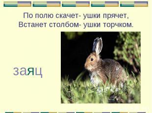 По полю скачет- ушки прячет, Встанет столбом- ушки торчком. заяц